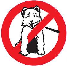 Interdit chien